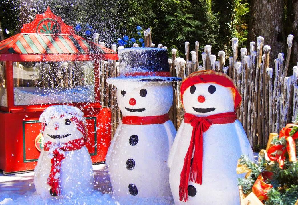 No Setor Bueno, neve artificial receberá a chegada do Papai Noel | Foto: Ilustrativa