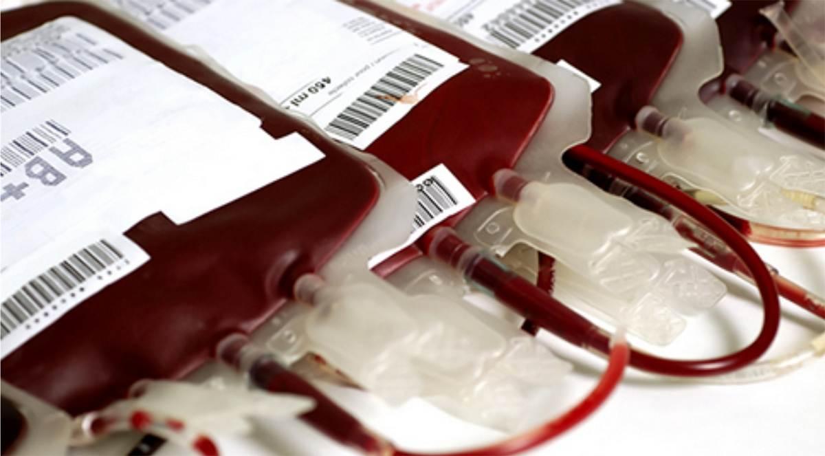 Unidade móvel recolherá doações de sangue no Jardim América nesta sexta, 26 | Foto: Reprodução