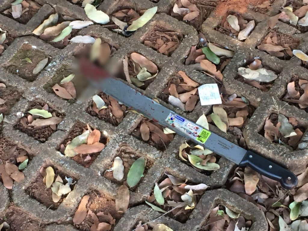 Facão utilizado para assassinar a vítima. Crime foi motivado por ciúmes | Foto: Divulgação