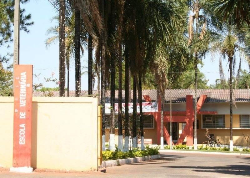 Escola de Veterinária da Universidade Federal de Goiás. Estudande morreu em misturador de ração | Foto: Reprodução