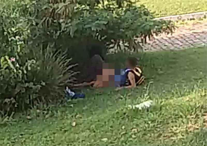 Viraliza vídeo de casal supostamente fazendo sexo no Parque Flamboyant | Foto: Leitor / Whatsapp