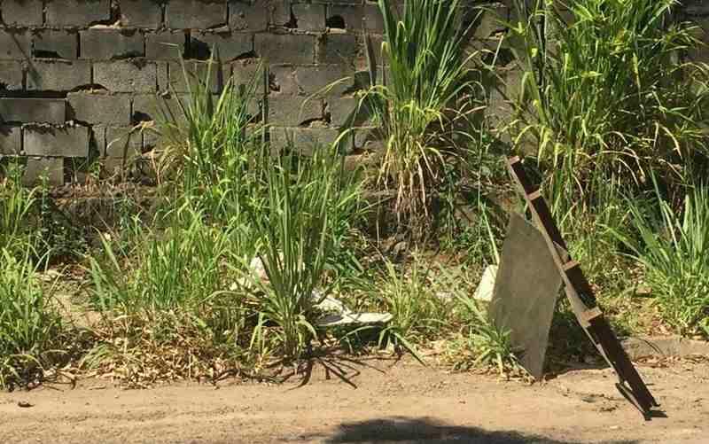 Cabeça humana foi encontrada no meio da rua na Vila Brasília | Foto: TV Anhanguera