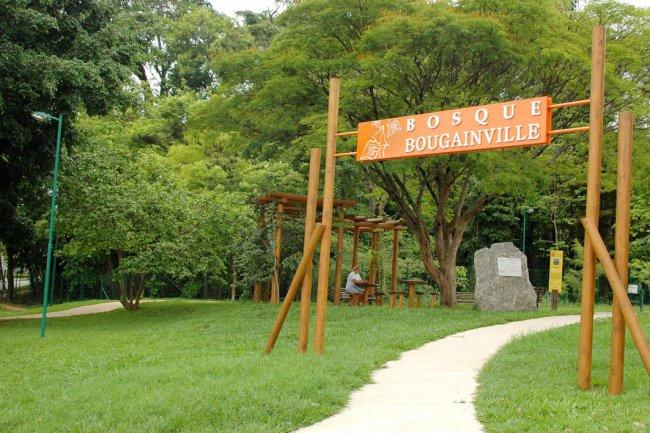 Bosque Bougainville Goiânia