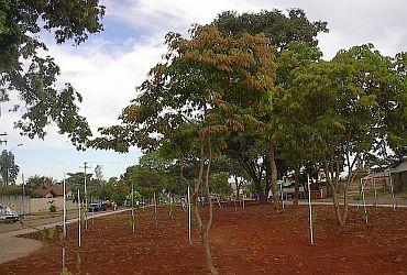 Bosque do Café em Goiânia