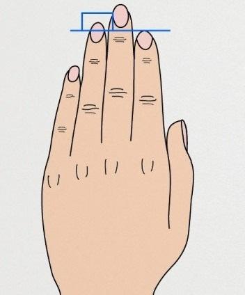 dedo anelar maior