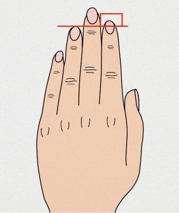 dedo indicador maior