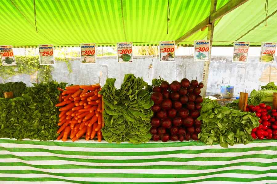 Segundo a Associação dos Feirantes de Aparecida de Goiânia (Afag), são cerca de 7 mil pessoas que trabalham em feiras livres no município e dependem delas para o sustento das suas famílias   Foto: Cesar Ogata / Secom