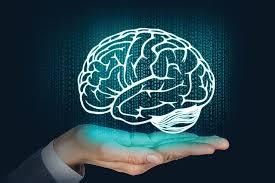 cérebro emocionalmente equilibrado