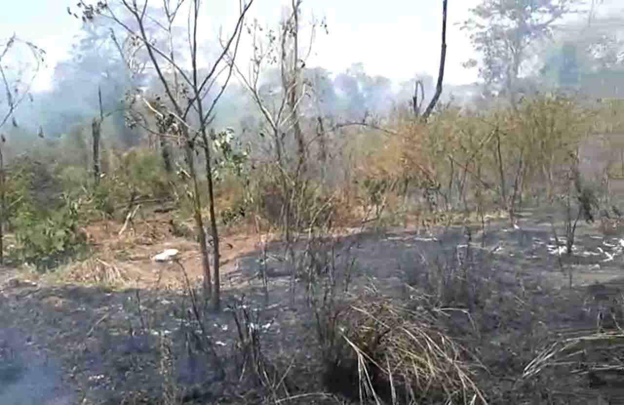 incêndio vegetação Tiradentes